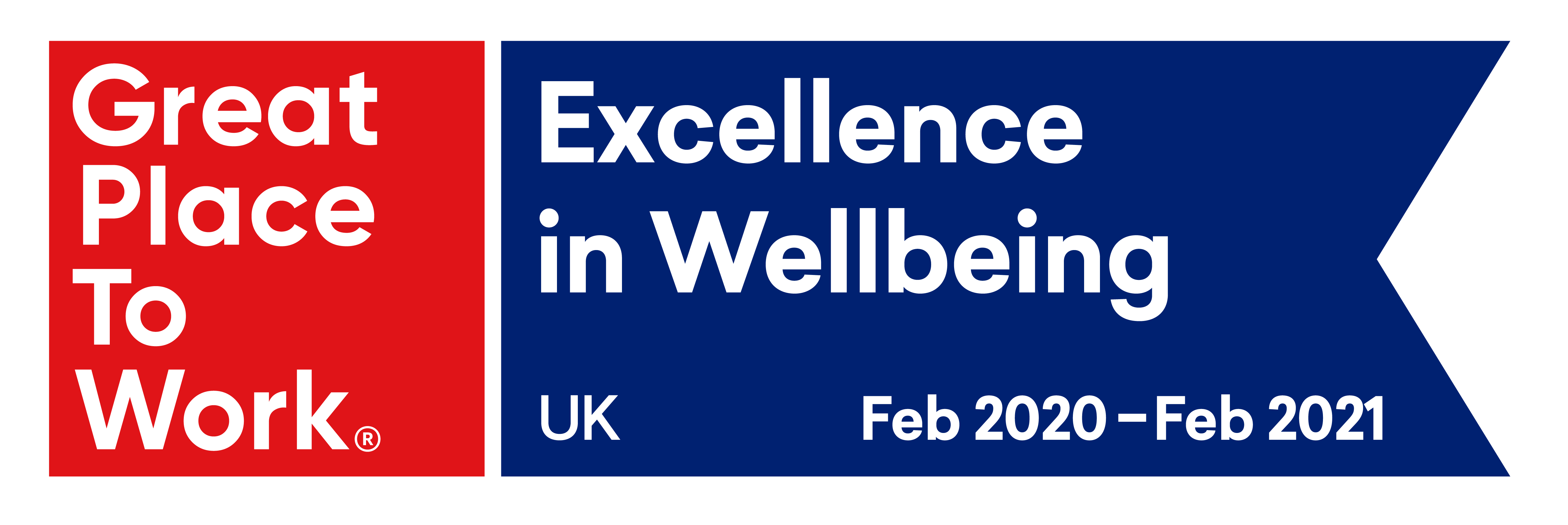 8.	Great Place to Work Excellence in Wellbeing Award